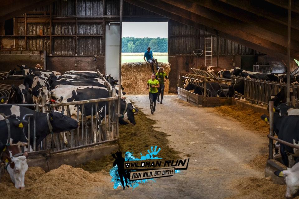 Wildman Run 2018 - 11