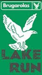 Logo Lake Run 2020